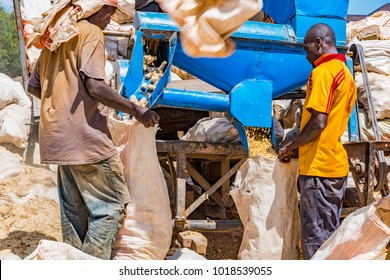 Uasin Gishu County, Dec 6, 2017: Two African farm workers standing below a maize deshelling machine, are bagging processed maize into gunny bags of corn cobs and kernels. Machine is on back of truck.