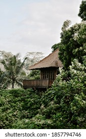 Ubud, Bali / Indonesia- 05.03.2017: The view of boutique luxury hotel and resort in the jungle in Bali, Indonesia. The lush green landscape, palm trees, sky
