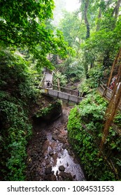 Ubud, Bali / Indonesia - December 29 2017: View of a bridge in the Monkey Forest of Ubud