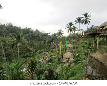 Ubud Bali, Indonesia - July 2019: View of travel to jatiluwih, one place to enjoy scenery see sawah terasering and buy souvenir at cafe,kiosk,market. crowd people tourist visit tourism object to relax