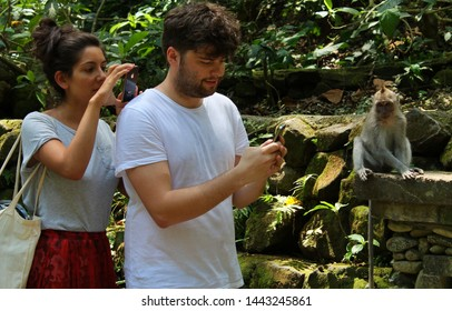 Ubud, Bali, Indonesia - June 2018 : A couple of tourist is taking photo of a monkey in Ubud Monkey Forest.