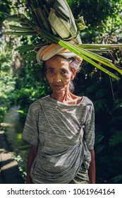 Ubud, Indonesia - February 28, 2016: Woman farmer carrying crops on her head in Ubud, Bali, Indonesia on February 28, 2016.