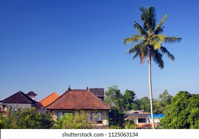Ubud Landscape. Palm tree and traditional houses