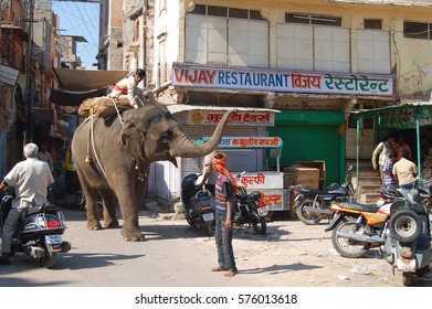 UDAIPUR, INDIA - NOV 25, 2016: Unidentified group of people in the streets of Udaipur. A man is riding an elephant through the streets. The other people look or step aside.