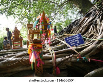 Udon Thani,Thailand - July 24 2018 : Nonidentical people are visit amazing and biggest root of trees and pray for best things at Khamchanode, Udon Thanai,Thailand.