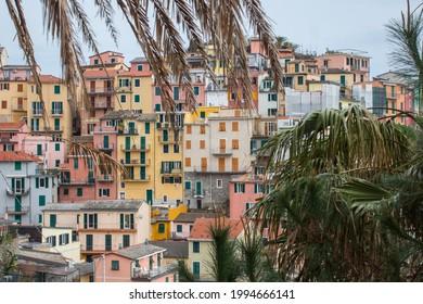 Uebersicht Manarola in Cinque Terre (Italien) am Mittelmeer Overview Manarola in Cinque Terre (Italy) on the Mediterranean