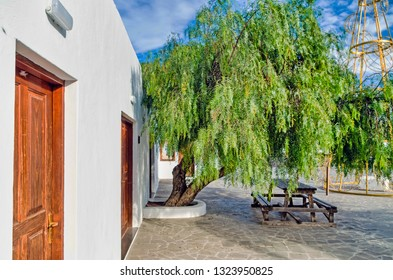 UGA, LANZAROTE, LAS PALMAS, SPAIN - January 17, 2019: Tree and table in courtyard against building.