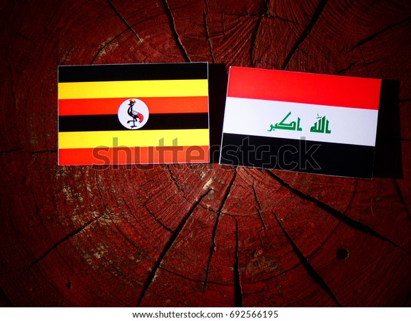 Uganda flag with Iraqi flag on a tree stump isolated