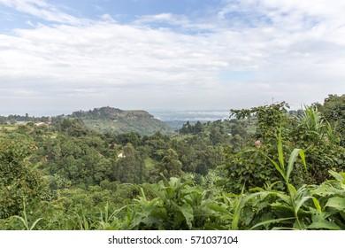 Uganda Mountain View