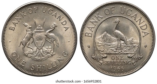 Uganda Ugandan coin 1 one shilling 1966, African shield with supporters, East African crowned crane in front of mountains, denomination below,