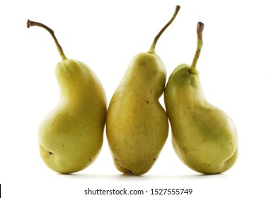 Ugly fruits. Oddly shaped organic pears isolated on white background