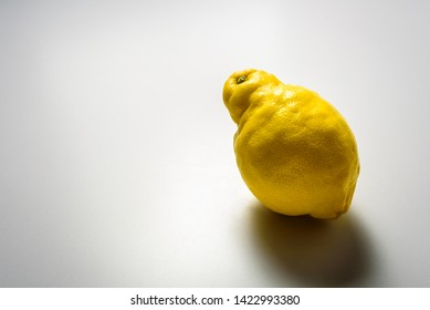 Ugly lemon fruit on grey background with hard light