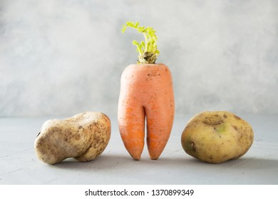 Ugly organic abnormal vegetables carrot and potatoes. Space for text. Concept organic vegetables.