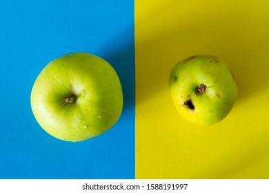 Ugly organic apple vs gmo apple concept