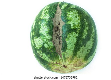 Ugly shaped watermelon with scar-like structure, scratch. Organic deformed vegetables and fruits isolated on white background. Copy space, top view, flatlay, minimalism.