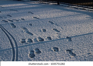 UK snow close up. February 2018, Surrey. Result of the 'Beast from the East' and storm Emma.