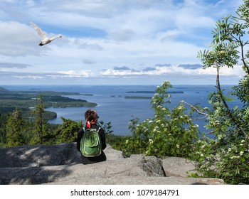 UKKO-KOLI HILL, FINLAND ON JULY 05. View of lake Pielinen from a rock on July 05, 2017 in Ukko-Koli Hill, Finland. Unidentified people, bird passes.