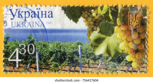 UKRAINE - CIRCA 2011: A post stamp printed in Ukraine shows Aligote white grape, Winemaking in Ukraine series, circa 2011