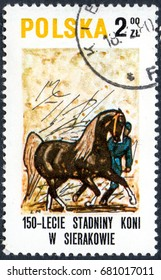 UKRAINE - CIRCA 2017: A postage stamp printed in Poland shows Demonstrating a horse, from the series Sierakov Horse Stud Farm, circa 1980