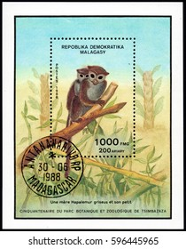 UKRAINE - CIRCA 2017: A stamp printed in Malagasy Madagascar shows Lesser Bamboo Lemur Hapalemur griseus, serie Fiftieth anniversary of the botanical and zoological park of Tsimbazaza, circa 1988