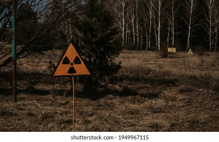 Ukraine. The level of radiation at the site of the burned forest during the accident at the Chernobyl nuclear power plant.