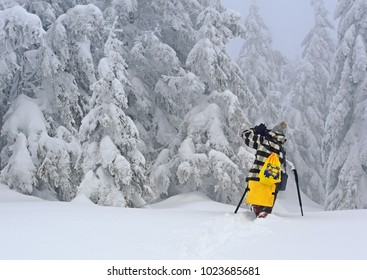 Ukraine, Osmoloda- February 11, 2017 : A tourist with a camera NIKON takes pictures of winter landscapes on a mountain slope in a haze of fog. Mountain Oval, Carpathians.