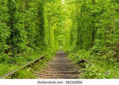 """Ukraine. Spring. Railway in the dense deciduous forest. """"Tunnel Of Love"""""""
