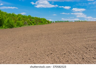 Ukrainian agricultural field before young crops come up