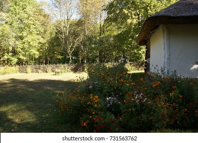 Ukrainian garden