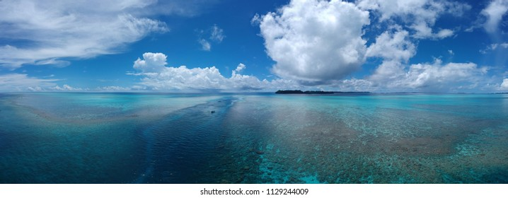 Ulong Channel Palau Best Dive Site biggest cabbage lettuce coral in Micronesia areal landscape