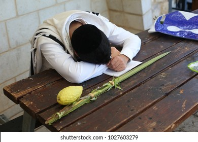 Ultra orthodox Jewish young man sleeps on table next to his Etrog (Citron fruit) and Lulav (palm tree leaves), symbols used on the Jewish holiday of Sukkot