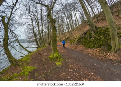 Ultramarathon runner running along a forest path in early spring