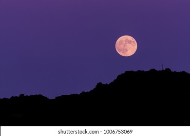 Ultraviolet night sky with full moon, silhouette shot.