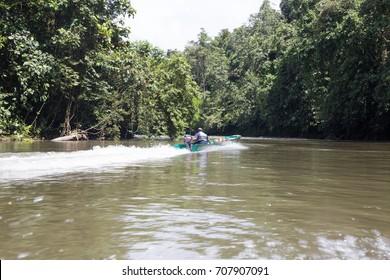 ULU TEMBURONG NATIONAL PARK, BRUNEI, NOVEMBER, 2016: unidentified boatman driving boat at Sungai Temburong in Ulu Temburong National Park