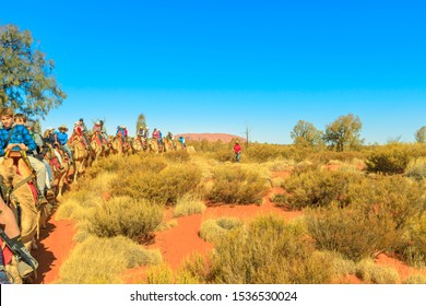 Uluru, Northern Territory, Australia - Aug 22, 2019: Uluru in the distance seen during popular guided Uluru Camel Tours in Australian outback. Popular activity to admire the monolith from camel.