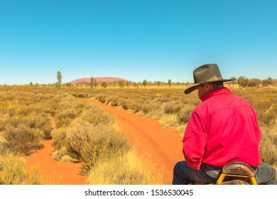 Uluru, Northern Territory, Australia - Aug 22, 2019: Uluru Ayers Rock in the distance seen during popular guided Uluru Camel Tours in Australian outback Red Centre. Red sand dunes in the wildeness.
