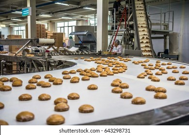 ULYANOVSK, RUSSIA - APRIL 19, 2017. Conveyor line with many cooked spice cakes at the confectionary plant