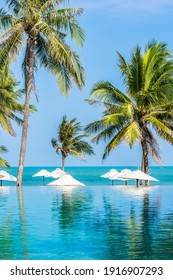 Umbrella and chair around outdoor swimming pool with coconut palm tree on blue sky white cloud