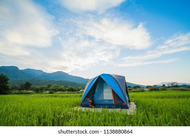 The umbrella tents were installed on rice paddies for tourists to stay in tents to help with rain and breeze at night for a comfortable stay in nature. Travel and camping in the meadow with a tent.