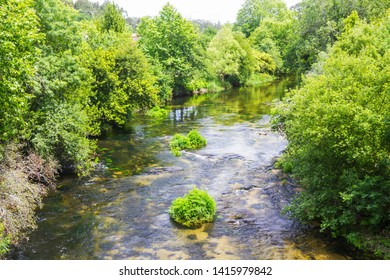 Umia River flowing between the trees of the riverbank forest in Ponteaernelas, Vilanova de Arousa town, Galicia, Spain
