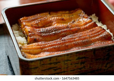 Unagi is a common ingredient in Japanese cooking, often as kabayaki.