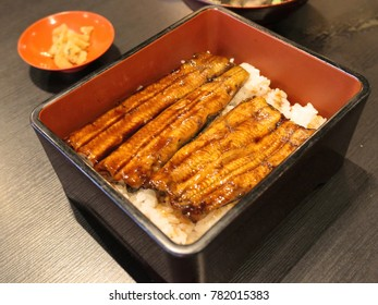 Unagi don Japanese grilled eel bowl with rice