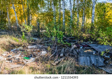 Unauthorized garbage dump in the forest