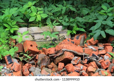 Unauthorized garbage dump in wild (forest, park): pieces of brick fight (red, gray), concrete; background of green leaves of plants. Concept: ecology; environmental pollution – destructive role of man
