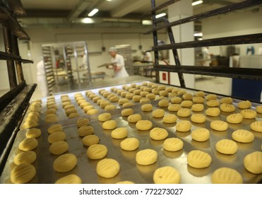 Unbaked cookies in the baker factory