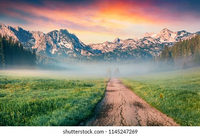 Unbelievable summer sunrise in Durmitor Nacionalni Park. Spectacular foggy view of of Montenegro countryside, Zabljak location. Beautiful world of Mediterranean countries. Traveling concept background