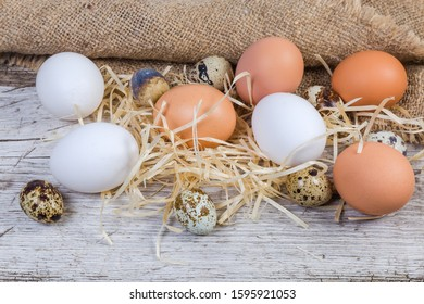 Uncooked brown and white chicken eggs and quail eggs on the old cracked wooden surface with wood wool and sackcloth