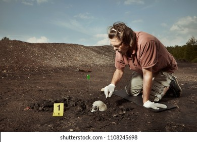 Uncovering of old human grave and skull on summer terrain excavations on field location