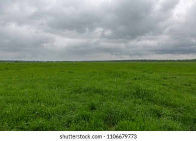 An uncultivated field with a green grass against a cloudy sky