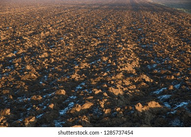 uncultivated land, agricultural field at wintertime